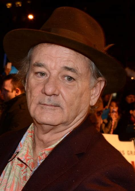 Simple House by Bill Murray Simple English Wikipedia The Free Encyclopedia