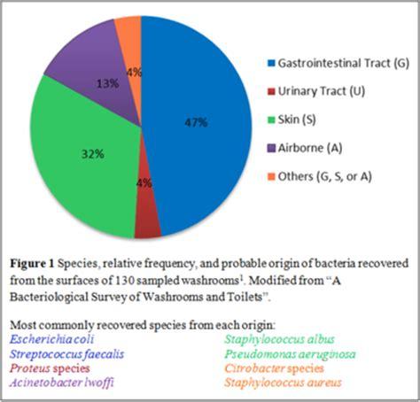 common bathroom bacteria microbiology of hospital washrooms microbewiki
