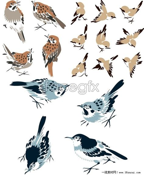 Home Design App Android three zhang zhong painting bird vector over millions