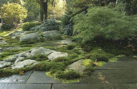 Landscape Design New York New York Plantings Landscape Designs Eclectic