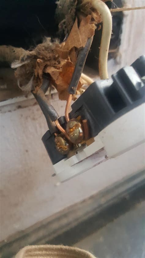 wiring a grounded receptacle radio wire diagram for 06