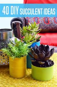 40 diy succulent ideas sew woodsy sew woodsy