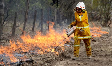 bushfire  warrumbungle national park australian