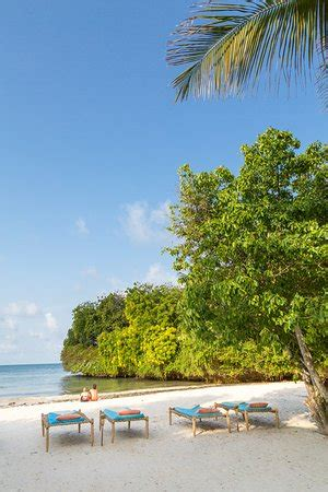 dorado cottage kenya dorado cottage malindi kenya africa hotel reviews