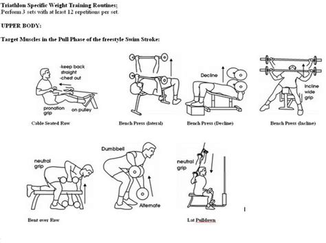 weight bench routine for beginners the gallery for gt weight lifting exercises for men