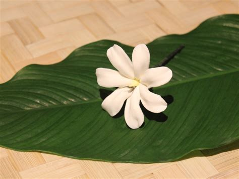 Gardenia In Hair Tahitian Gardenia Fimo Hair