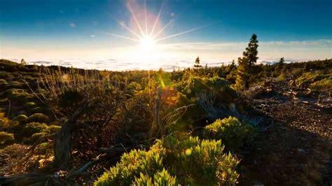 Beleza Da Natureza Fotos E Imagens | natureza a beleza e a cria 231 227 o do nosso deus youtube