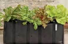 Roll Out Vegetable Garden Pre Made Vegetable Gardens The Roll Out Veg Mat Makes For