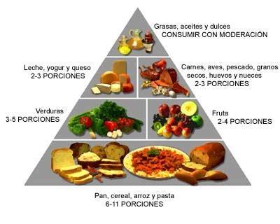 proteinas y grasas prote 237 nas y carbohidratos carbohidratos net