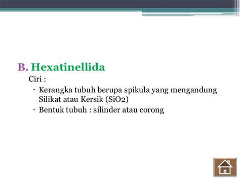 Biology Sma Kelas X B materi kelas x biology porifera
