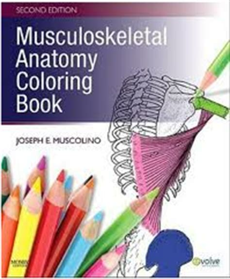musculoskeletal anatomy coloring book free books musculoskeletal anatomy