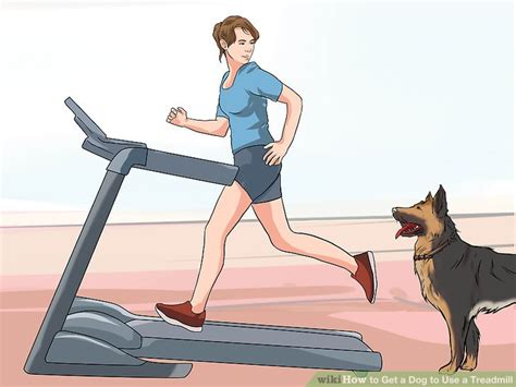 how to your to use a treadmill how to get a to use a treadmill 10 steps with pictures