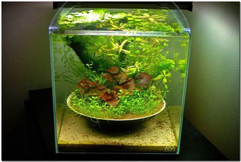 design aquascape mini modern aquarium design with aquascape style for new