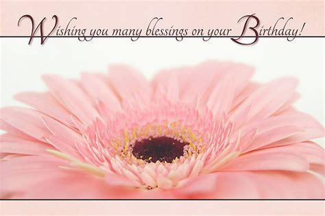 Kids Bedroom Wall Stickers quot birthday blessings pink gerbera daisy card quot posters by