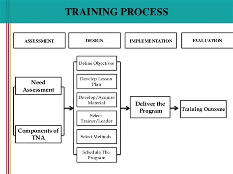 Model Resume Examples by Training Process Human Resource Management