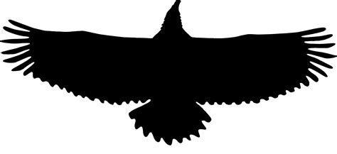 free clipart silhouette eagle clipart silhouette pencil and in color eagle