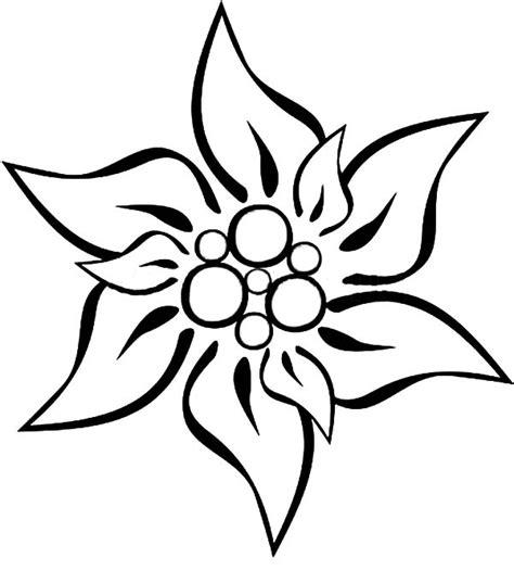 edelweiss drawing  getdrawingscom   personal
