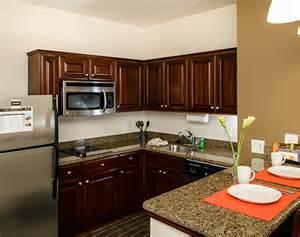 discount kitchen cabinets nashville tn cabinet for