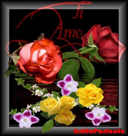 fiori per ogni occasione fiori per ogni occasione