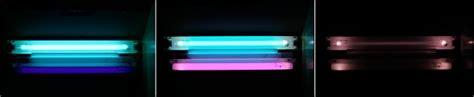 unfiltered black light fluorescent bulbs ultraviolet photography randombio com