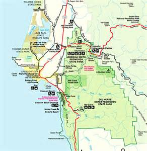 redwood national forest map get domain pictures