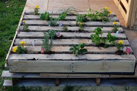 whites outdoor garden up herb up secure wall mount how to plant an herb garden in a salvage wood pallet how