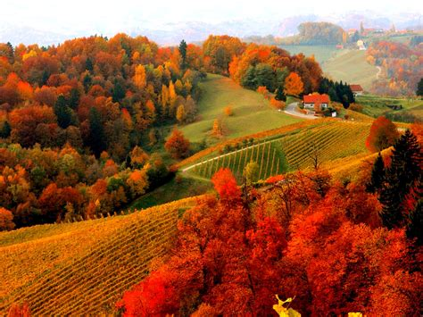golden village wallpaper free autumn mountain wallpapers high quality resolution at