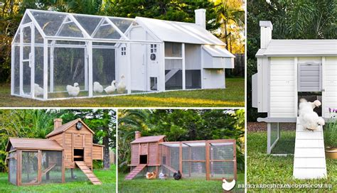buy chicken house buy chicken house 28 images buy chicken coop kit foter where to buy pawhut wooden