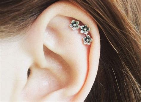 earrings for cartilage www pixshark images