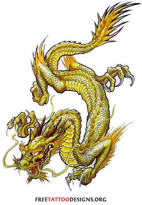 golden dragon tattoo virat kohli golden dragon tattoos pinterest dragons tattoo and