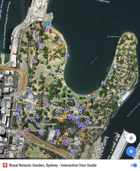 Sydney Botanic Gardens Map 17 Best Images About Royal Botanical Garden Sydney Nsw Australia On Pinterest Gardens