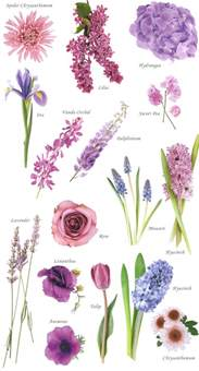 Different Types Of Purple by Blue And Purple Wedding Flowers Advice Project Wedding