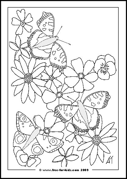 blank coloring pages for adults knockout grig3 org