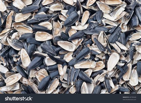 lots of empty sunflower seed shells with selective focus