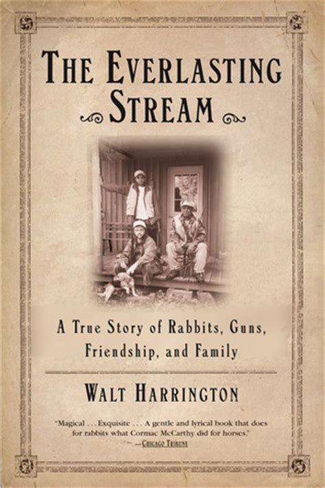 the everlasting books the everlasting a true story of rabbits guns