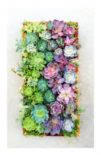 the rikrak studio my favourite things vertical succulents wall garden