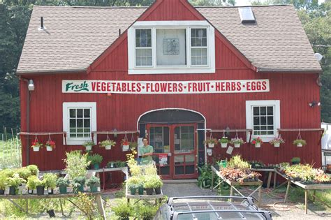 Home Goods Fairfield Ct by Organic Farm Stands Of Fairfield County