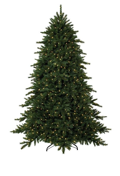 Images Of Christmas Trees Types Of Christmas Trees Christmas Tree Types
