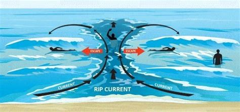 rip diagram safety how to survive rip currents and other