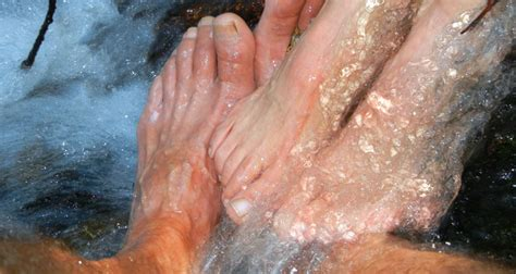 Castor Foot Detox by Take A Castor Detox Bath For Relief And Organ