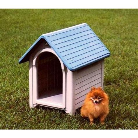 outside dog houses photo collection dog house outside the