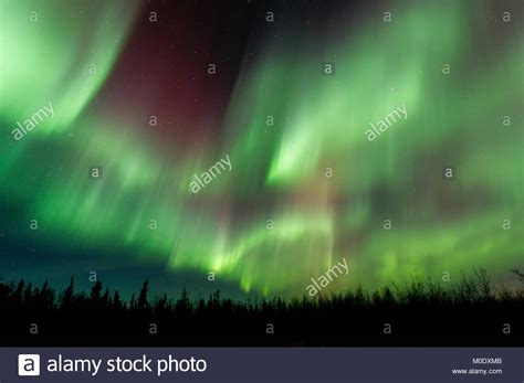 northern lights forecast fairbanks borealis fairbanks stock photos borealis