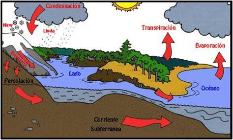 imagenes lagunas mentales da 241 o en la dinamica de los ecosistemas mgm1515