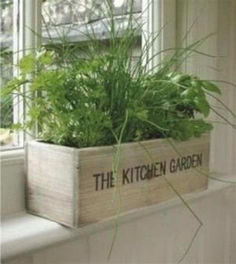 kitchen herb garden ideas by ammazed home garden ideas