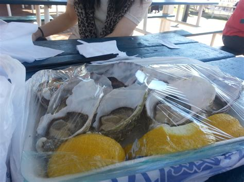 morgans seafood redcliffe morgans seafood redcliffe live in bne