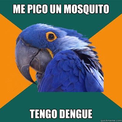 Mosquito Memes - me pico un mosquito tengo dengue paranoid parrot quickmeme