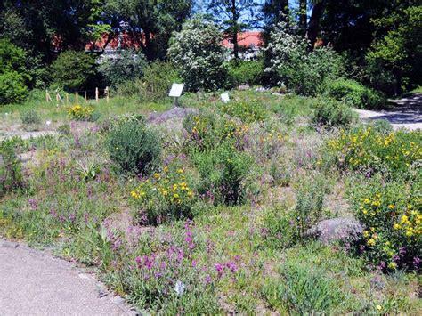 Garten Pflanzen Wien by Der Botanische Garten Stadtbekannt Wien Das Wiener