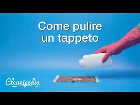 Come Pulire I Tappeti Persiani Con Ammoniaca by Come Pulire Un Tappeto Tutto Per Casa
