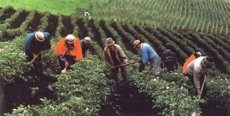 imagenes satelitales para agricultura cesinos agricultores sin atenci 243 n del estado corape