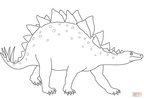 coloring pages dinosaurs stegosaurus brachiosaurus dinosaur skeleton coloring page stegosaurus